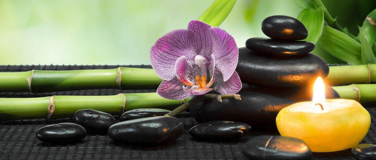news, promozioni ed articoli sul mondo zucca - Quadri Feng Shui Per Camera Da Letto